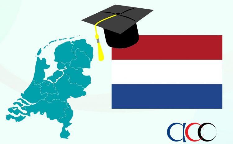 Университети и Образование в Холандия